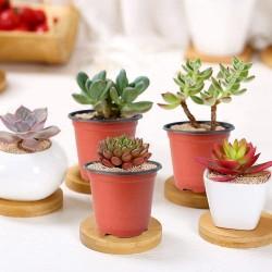Plastic Nursery Pot/Pots