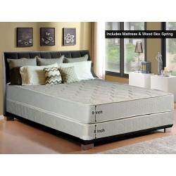 Continental Sleep, 8-inch...